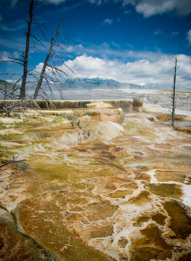 Ethereal Yellowstone